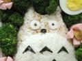 Bento #1: Totoro