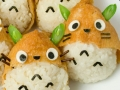 How to make Totoro Inari-zuahi