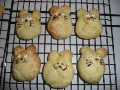 Totoro cream puffs by Joan, Posted/created on 4/9/2011